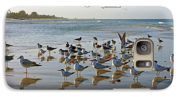 Galaxy Case featuring the photograph Gulls And Terns On The Sanbar At Lowdermilk Park Beach by Robb Stan