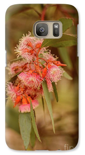 Galaxy Case featuring the photograph Gum Nuts 2 by Werner Padarin