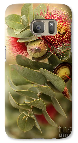 Gum Nuts Galaxy S7 Case by Werner Padarin