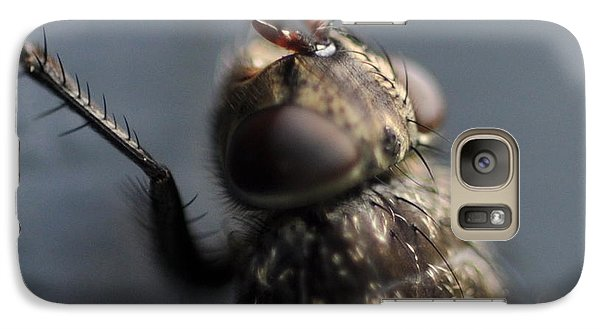 Galaxy Case featuring the photograph Hair On A Fly by Glenn Gordon