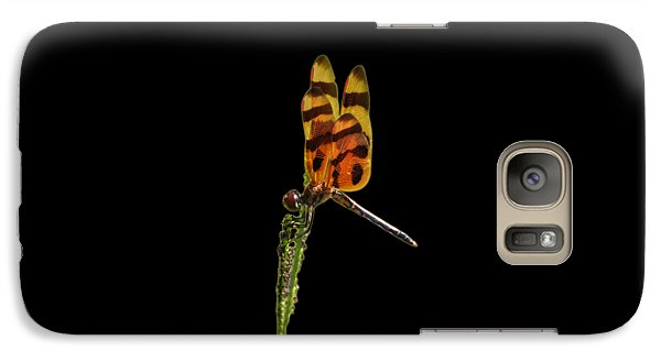 Galaxy Case featuring the photograph Halloween Pennant Dragonfly .png by Al Powell Photography USA