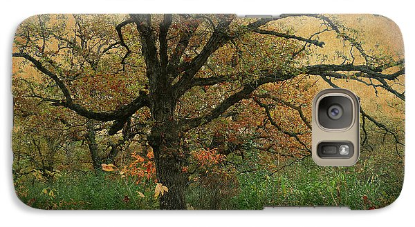 Galaxy Case featuring the photograph Halloween Tree 2 by Scott Kingery