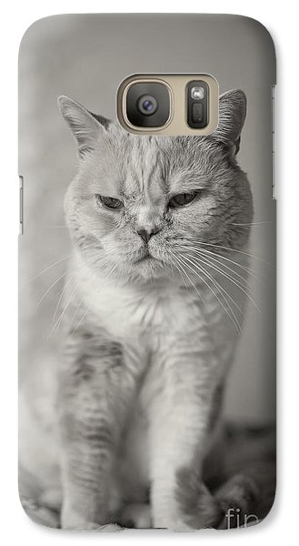 Galaxy Case featuring the photograph Handsome Cat by Aiolos Greek Collections