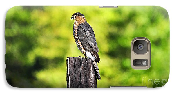 Galaxy Case featuring the photograph Handsome Hawk by Al Powell Photography USA