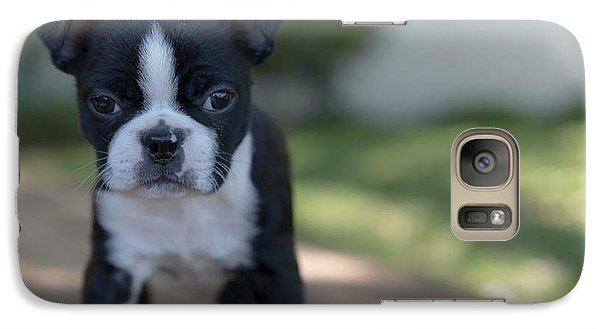 Galaxy Case featuring the photograph Harley As A Puppy by Lora Lee Chapman