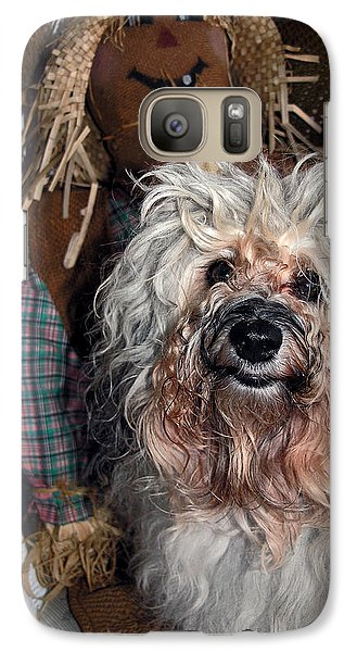 Galaxy Case featuring the photograph Havanese Cutie by Sally Weigand