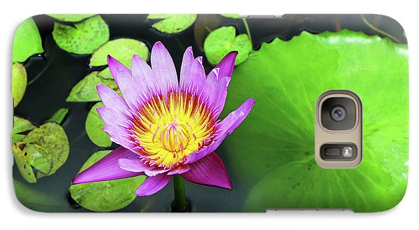 Galaxy Case featuring the photograph Hawaii Flora by Denise Moore