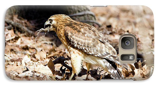 Galaxy Case featuring the photograph Hawk And Gecko by George Randy Bass