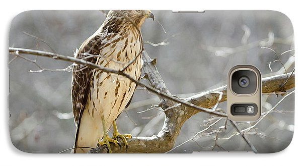 Galaxy Case featuring the photograph Hawk On Lookout by George Randy Bass