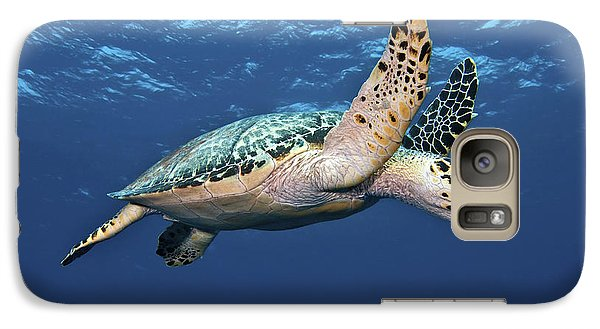 Hawksbill Sea Turtle In Mid-water Galaxy S7 Case by Karen Doody