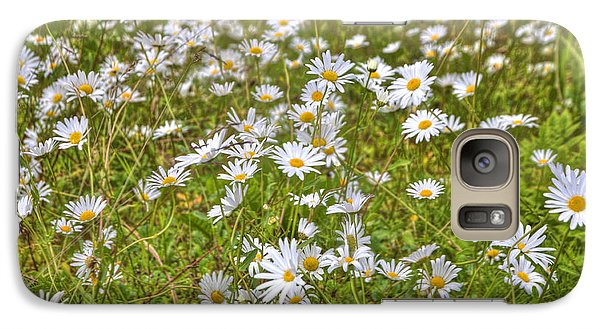 Galaxy Case featuring the photograph Hdr Desert Wildflowers by Matthew Bamberg