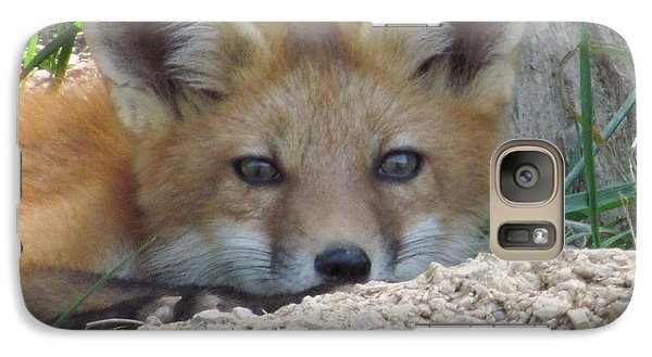 Galaxy Case featuring the photograph Head Shot Of Fox Upclose by Laurinda Bowling