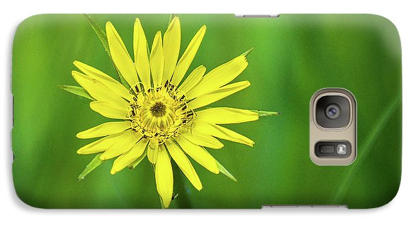 Galaxy S7 Case featuring the photograph Hello Wild Yellow by Bill Pevlor