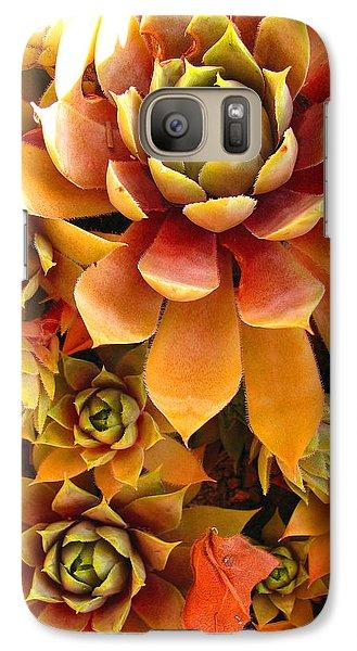 Galaxy Case featuring the photograph Hen And Chicks - Perennial by Brooks Garten Hauschild