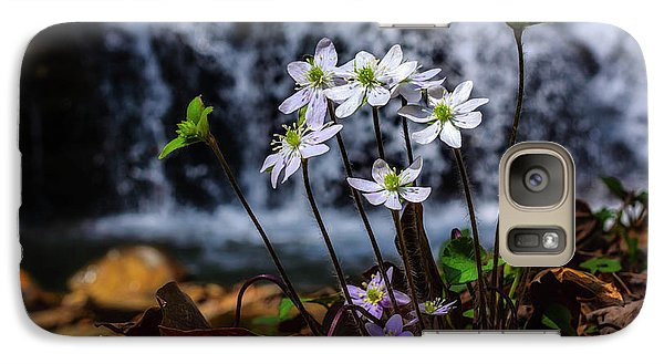 Galaxy Case featuring the photograph Hepatica And Waterfall by Thomas R Fletcher