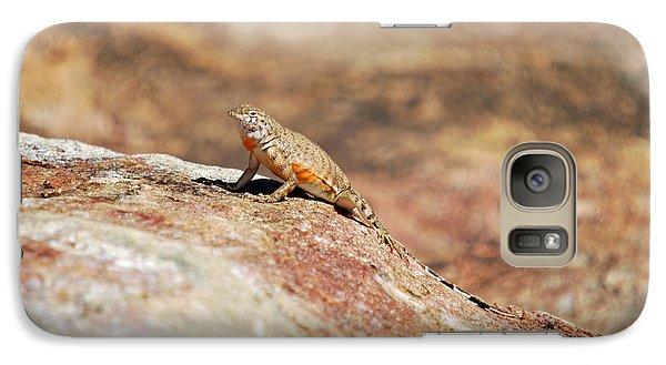 Galaxy Case featuring the photograph Here Lizard Lizard  by Teresa Blanton