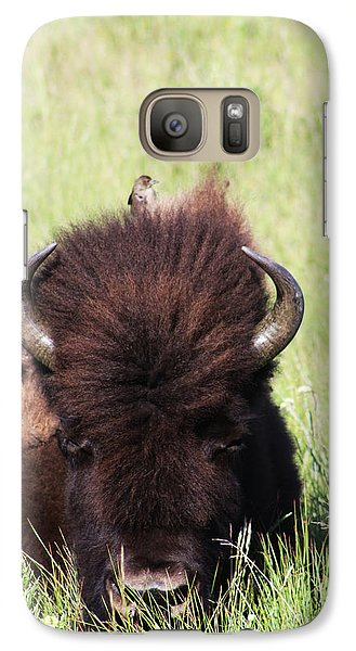 Galaxy Case featuring the photograph Hey There Is A Bird On Your Head by Alyce Taylor
