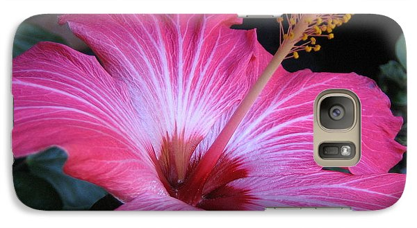 Galaxy Case featuring the photograph Hibiscus Photograph by Barbara Yearty