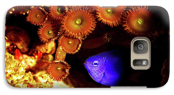 Galaxy Case featuring the photograph Hiding Damsel by Anthony Jones