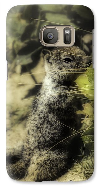 Galaxy Case featuring the photograph Hiding In Plain Sight by Diane Schuster