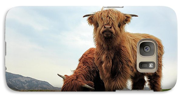 Bull Galaxy S7 Case - Highland Cow Calves by Grant Glendinning