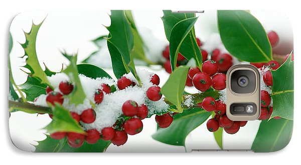 Galaxy Case featuring the photograph Holly Berries On White by Sharon Talson