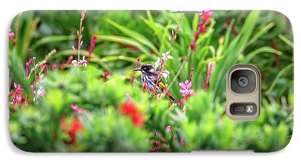 Galaxy Case featuring the photograph Honey Eater, Bushy Lakes by Dave Catley