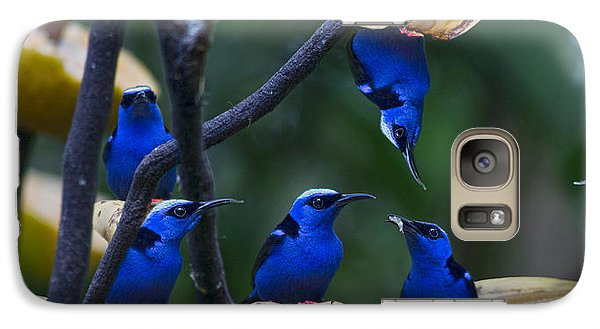 Honeycreeper Galaxy S7 Case