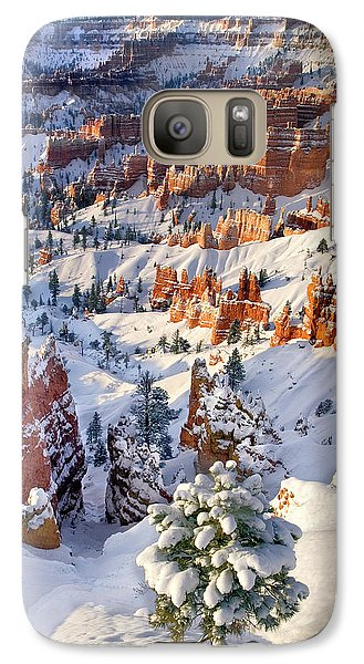 Galaxy Case featuring the photograph Hoodoos And Fir Tree In Winter Bryce Canyon Np Utah by Dave Welling
