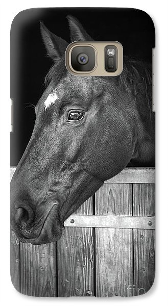 Galaxy Case featuring the photograph Horse Portrait by Delphimages Photo Creations