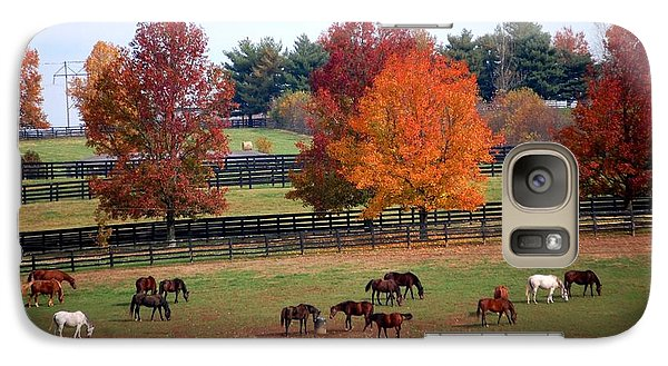 Galaxy Case featuring the photograph Horses Grazing In The Fall by Sumoflam Photography