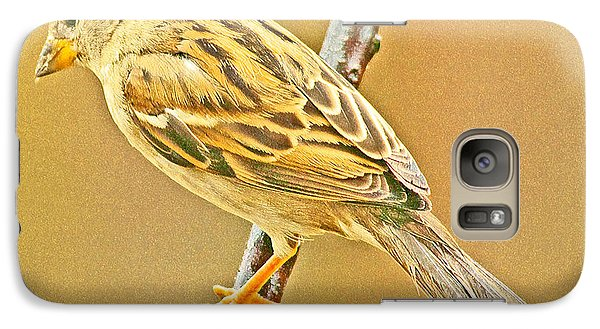 Galaxy Case featuring the photograph House Sparrow by A Gurmankin