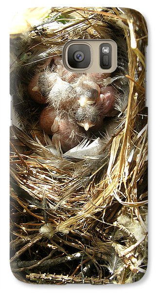 Galaxy Case featuring the photograph House Wren Family by Angie Rea