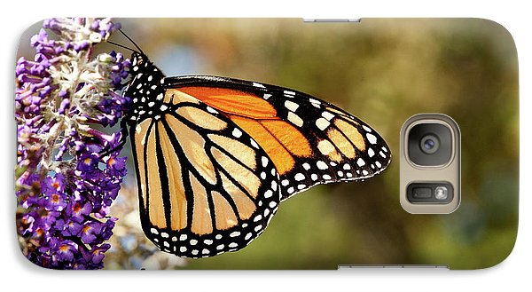 Galaxy Case featuring the photograph Hues Of Autumn Monarch by Lara Ellis