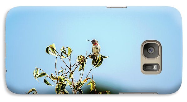 Galaxy Case featuring the photograph Humming Bird On A Branch by Micah May