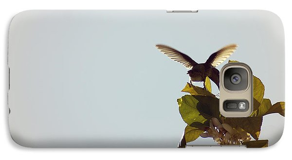 Galaxy Case featuring the photograph Hummingbird And Lemon Blossoms by Cindy Garber Iverson