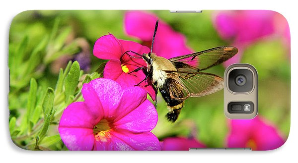 Galaxy Case featuring the photograph Hummingbird Moth by Christina Rollo