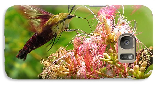 Galaxy Case featuring the photograph Hummingbird Moth by Phyllis Beiser