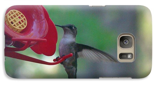Galaxy Case featuring the photograph Hummingbird  by Rand Herron