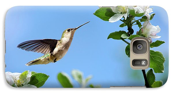 Hummingbird Springtime Galaxy S7 Case