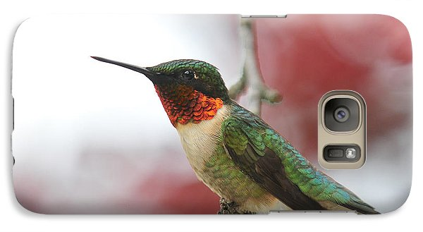 Galaxy Case featuring the photograph Hummingbird Watch Tower by Lara Ellis