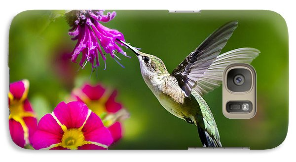 Hummingbird With Flower Galaxy S7 Case by Christina Rollo