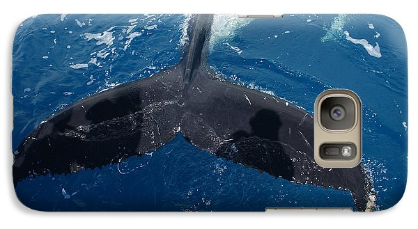 Galaxy Case featuring the photograph Humpback Whale Tail With Human Shadows by Gary Crockett
