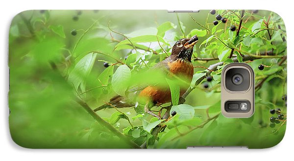 Galaxy Case featuring the photograph Hungry Robin by Debby Herold