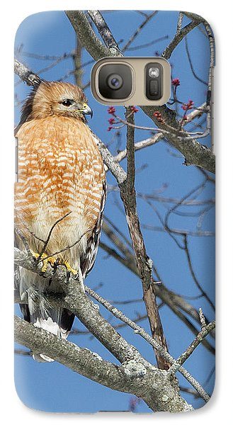 Galaxy Case featuring the photograph Hunting by Bill Wakeley