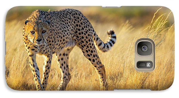 Hunting Cheetah Galaxy Case by Inge Johnsson