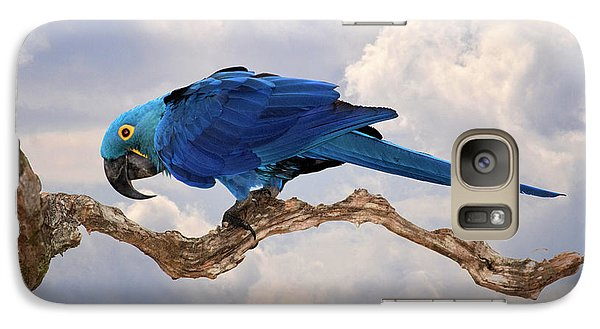 Galaxy Case featuring the photograph Hyacinth Macaw by Wade Aiken