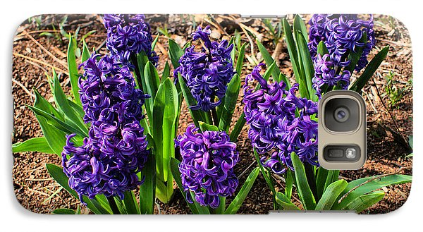 Galaxy Case featuring the photograph Hyacinth by Rick Friedle