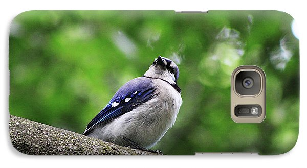 Galaxy Case featuring the photograph I Hear Something by Alyce Taylor