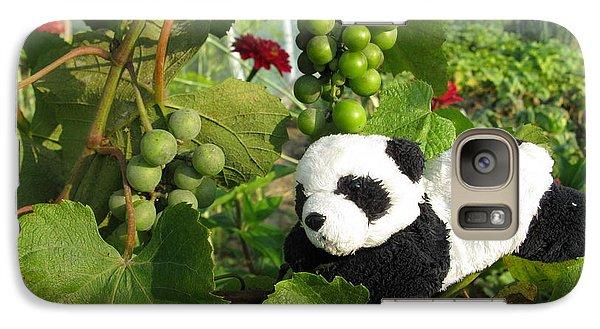 Galaxy Case featuring the photograph I Love Grapes Says The Panda by Ausra Huntington nee Paulauskaite